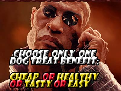 Dog treat main benefits poster