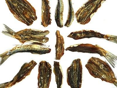 sardine-organic-dog-treats