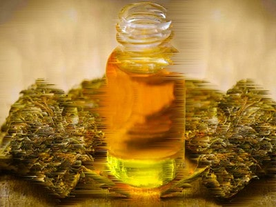 Cannabis_Oil for dogs