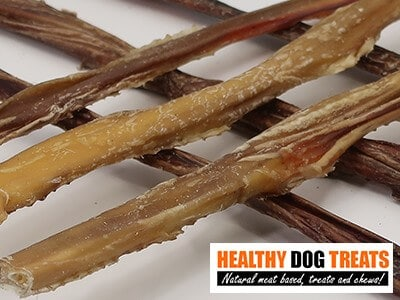 bully sticks Steers dog treats