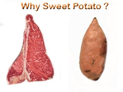 why sweet potato dog treats