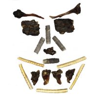 MEDIUM chewer sampler pack meat face