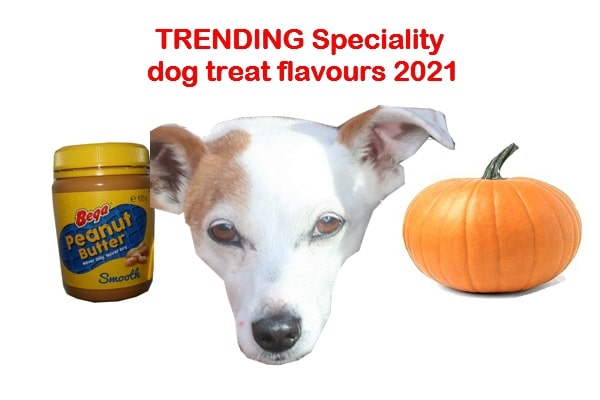 Top dog treat trends 2021 Australia, America, UK
