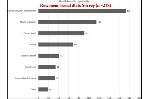 Raw meat-based diets Health Benefits reported